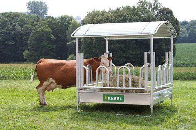 Hranirea animalelor din ferma, mai usoara cu ieslea potrivita